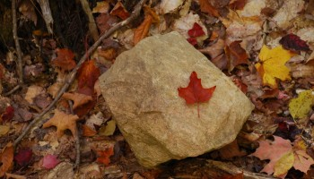 Fall: Best time of year to explore Ontario Parks