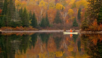 Algonquin: Tips for Interior canoe tripping in Autumn