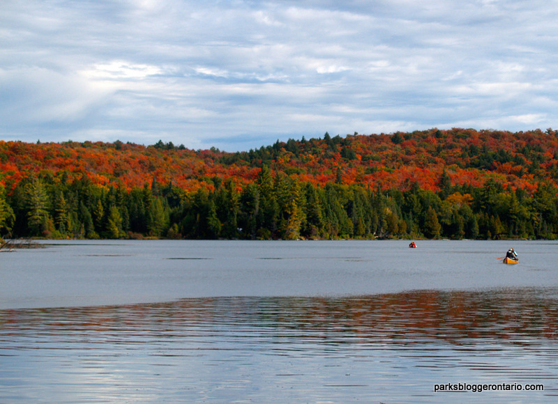Hambone Lake Canoeing Algonquin