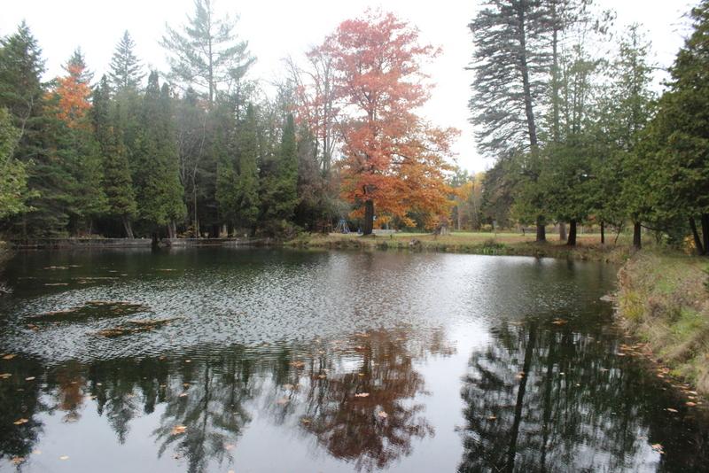 springwater provincial park pond
