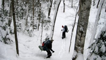 Snowshoeing Algonquin's Highlands Backpacking Trail