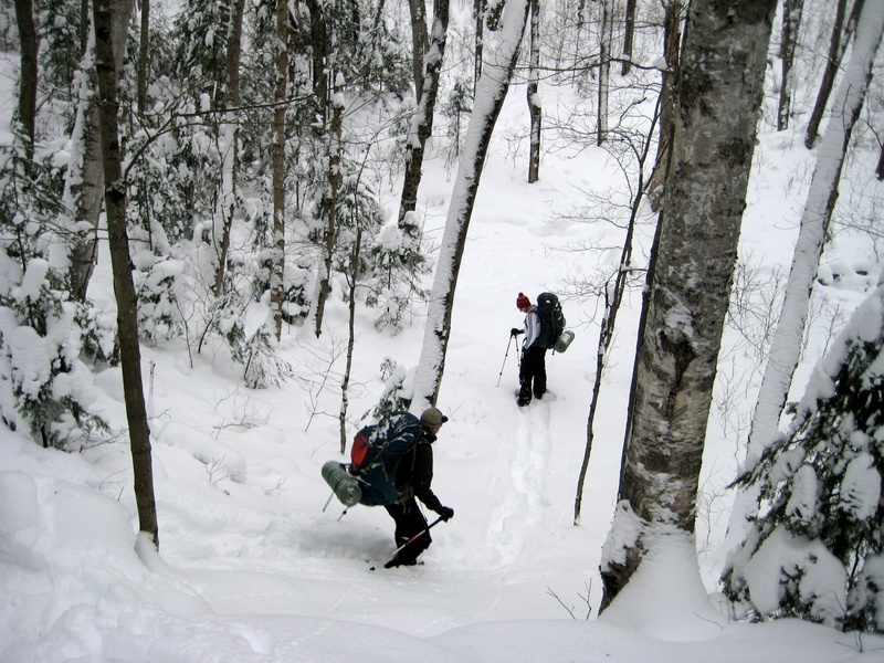 highlands backpacking trail - snowshoeing - algonquin