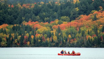 Best day trails of Algonquin to enjoy Fall colours