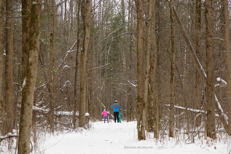 cross country skiing in Fitzroy provincial park ottawa river