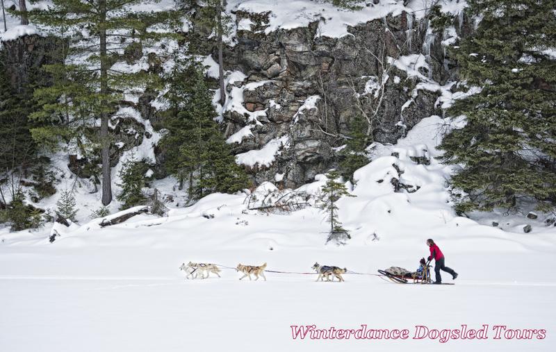 winterdance11logo