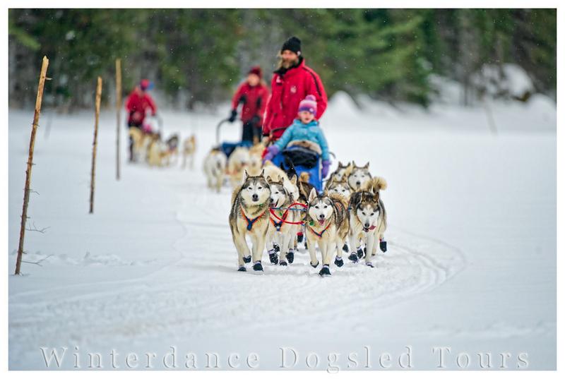 Winter dance dogsled tours at Haliburton Highlands, Ontario
