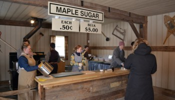making maple sugar from fresh syrup