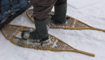Getting started with Snowshoeing