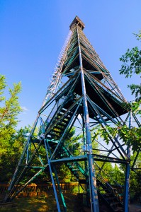 Peregrine Trail - Fire Tower - Finlayson Point Provincial Park