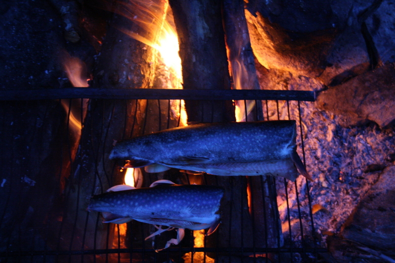 Grilled trout for dinner_Petawawa River_Algonquin