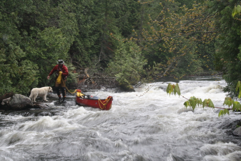 A tricky lining on the Crow River, Algonquin