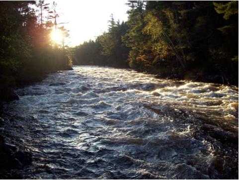 Rollaway Rapids, Petawawa River, Algonquin