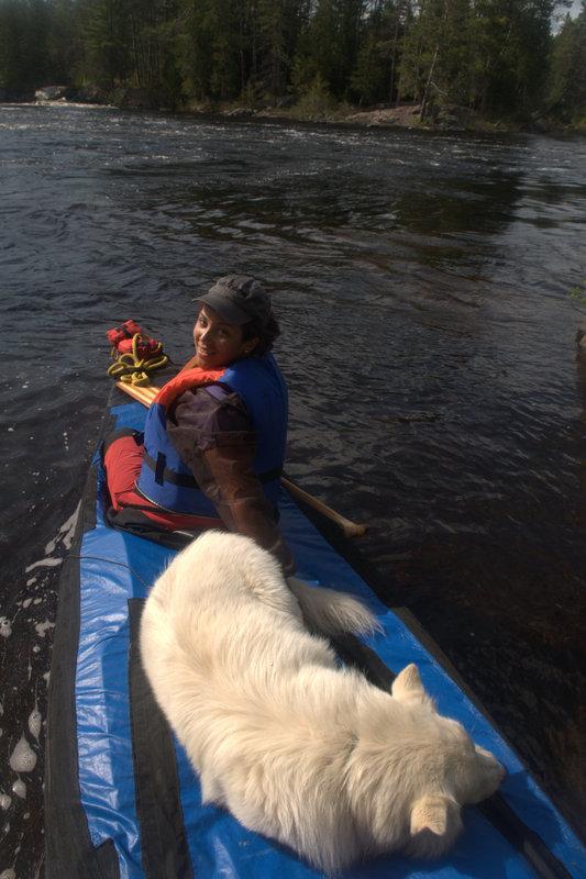 Paddling in Petawawa River, Algonquin