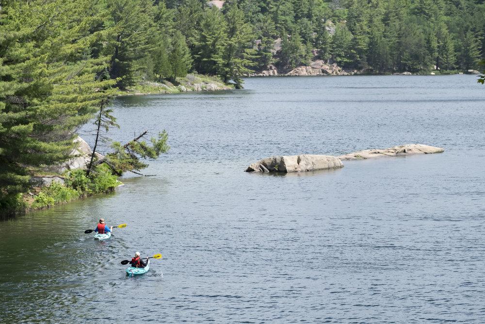 Kayakers on George Lake Killarney