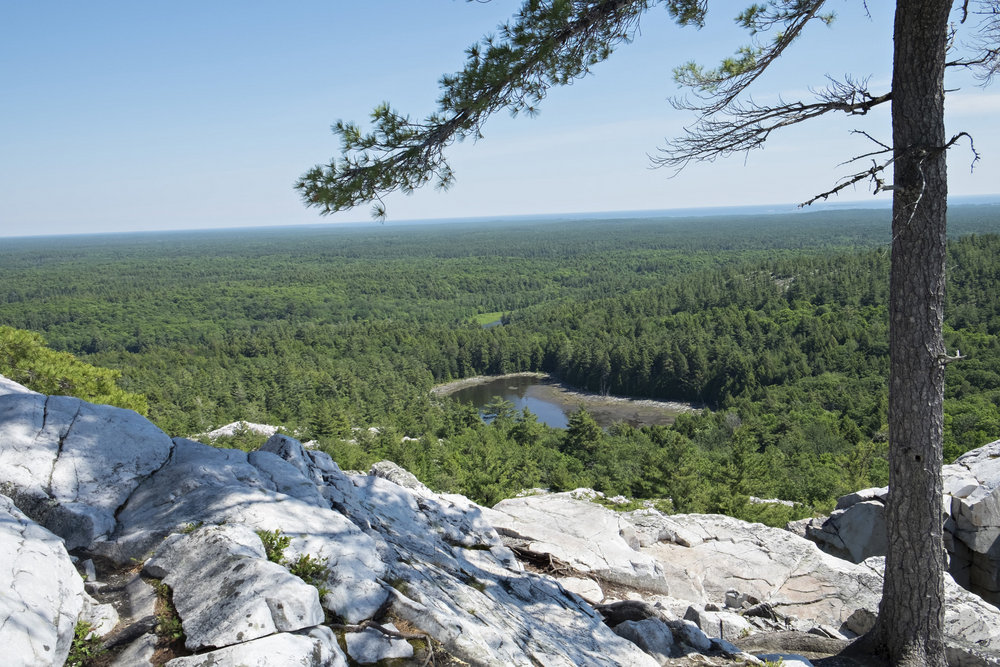 South view from top of Crack Trail, Killarney Provincial Park