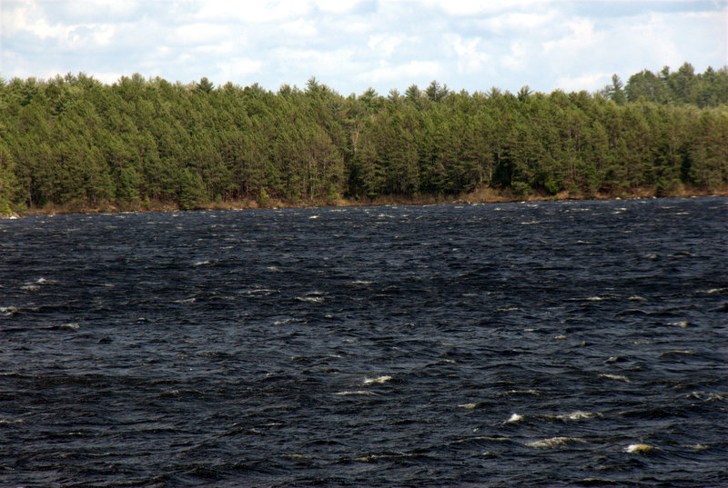 Heavy winds on Cedar Lake, Algonquin