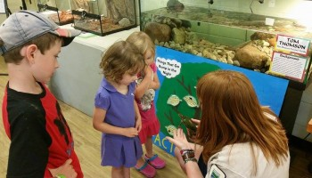 Kids experiencing turtles at MacGregor Point