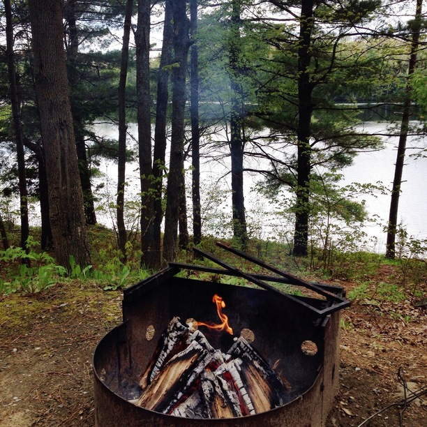 Sharbot lake provincial park review for Canadian fishing trips cheap