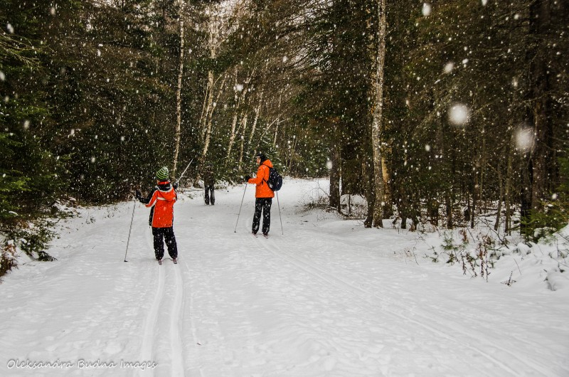 Skiing in Killarney_Best Ontario Parks to visit in the Winter