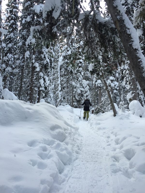 tips to encourage kids to get involved in snowshoeing