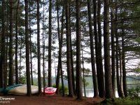 My favorite campsite: Jingwakoki campground, Samuel de Champlain Provincial Park