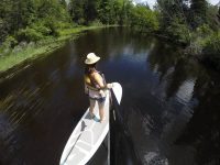 Things to do at Bonnechere Provincial Park